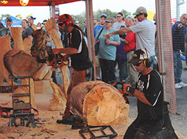 Chainsaw Carving Entertainment Two Carvers